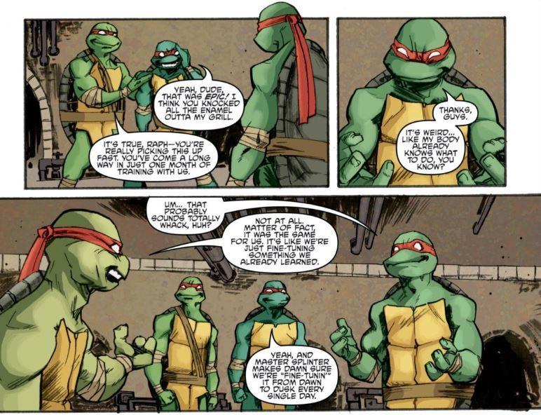 Eastman, K., Waltz, T., Duncan, D., & Santolouco, M. (2011). Teenage Mutant Ninja Turtles. Issue 5. IDW Publishing.