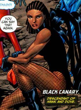 Black Canary, descendent of Hawk and Dove