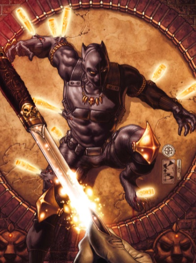How would T'Challa's skills translate to the digital realm?