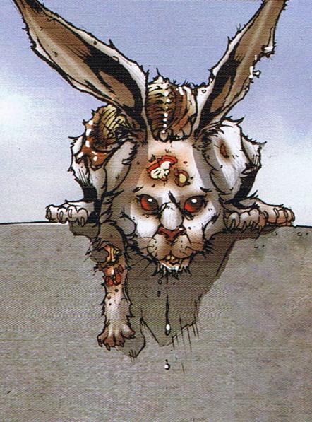 The Evil White Rabbit