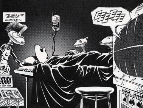 Mourning Bruce