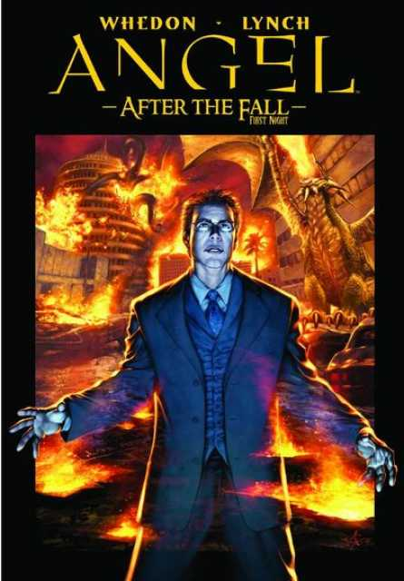 Angel: After the Fall - Volume 2