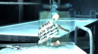 Great White Shark's riddle.