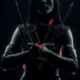 Élodie Yung as Elektra