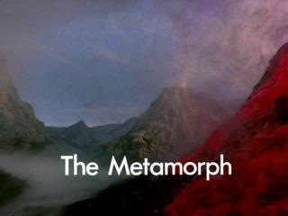 The Metamorph