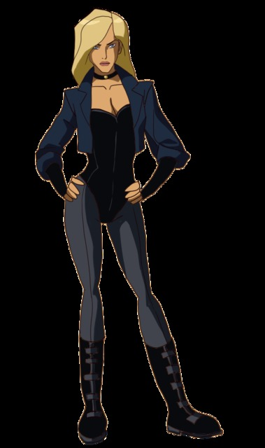 Black Canary in Young Justice