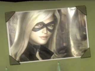 Black Canary's picture as seen in story mode of the game