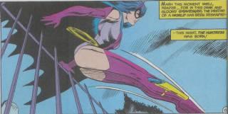 Huntress II (Helena Wayne)