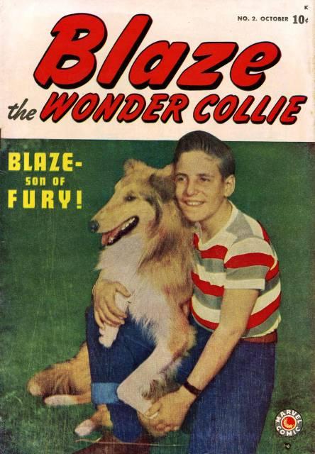 Blaze the Wonder Collie