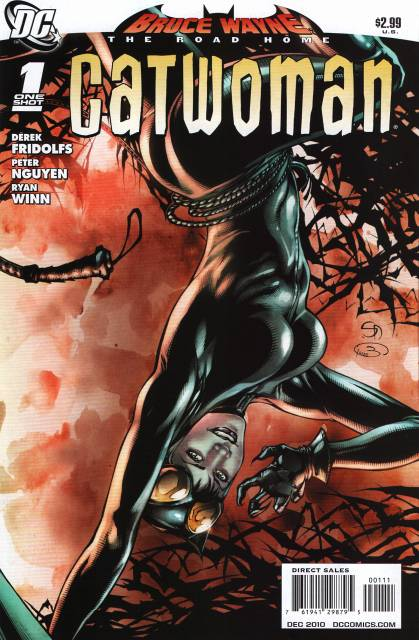 Bruce Wayne: The Road Home: Catwoman