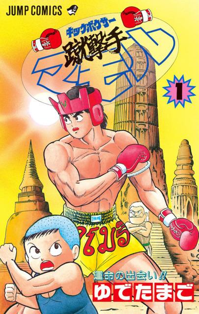 Kickboxer Mamoru