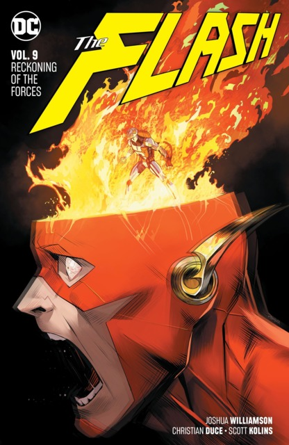 The Flash: Reckoning of the Forces