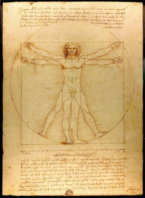 The Vitruvian Man, by Leonardo Da Vinci