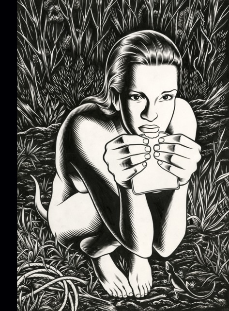 Fantagraphics Studio Edition: Charles Burns' Black Hole