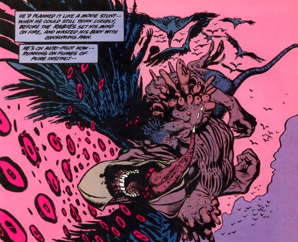 The Death of Jamie Delano's Animal Man