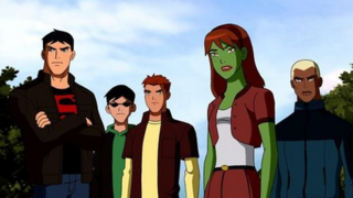 CW Allegedly Working on Live Action Young Justice Show