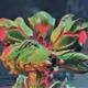 Avatar image for rhubarb