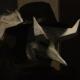 Avatar image for kiltro95