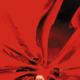 Avatar image for lightburst