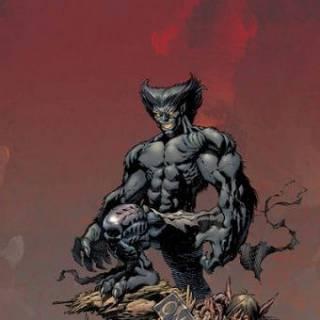 Earth-295 AoA/Dark Beast
