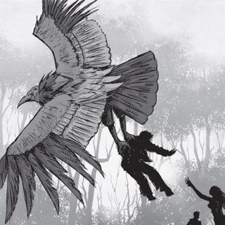 Thunderbird - The Monster Hunter's Survival Guide #2
