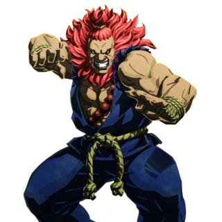 Street Fighter V artwork.