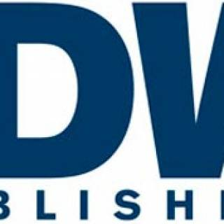 Current IDW Logo