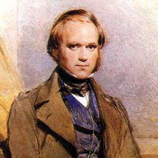 A Young Darwin