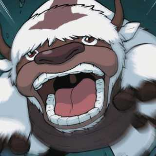 Appa to the rescue