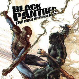 Black Panther: Man Without Fear #516 cover